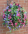 Hanging Baskets With Artificial pink petunias G-25