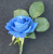 Wedding Real Touch Royal Blue Rose Buttonhole
