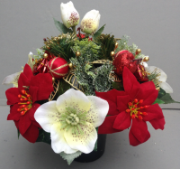 Christmas Memorial pot with Christmas roses